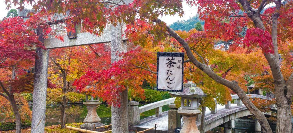 Tänk att resa till Japan och uppleva den japanska kulturen